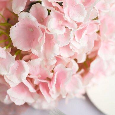 """Hortenzija, didžialapė """"Silky Pink""""®"""