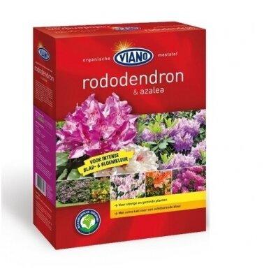 Bio, mineralinės-organinės trąšos rododendrams 'VIANO'